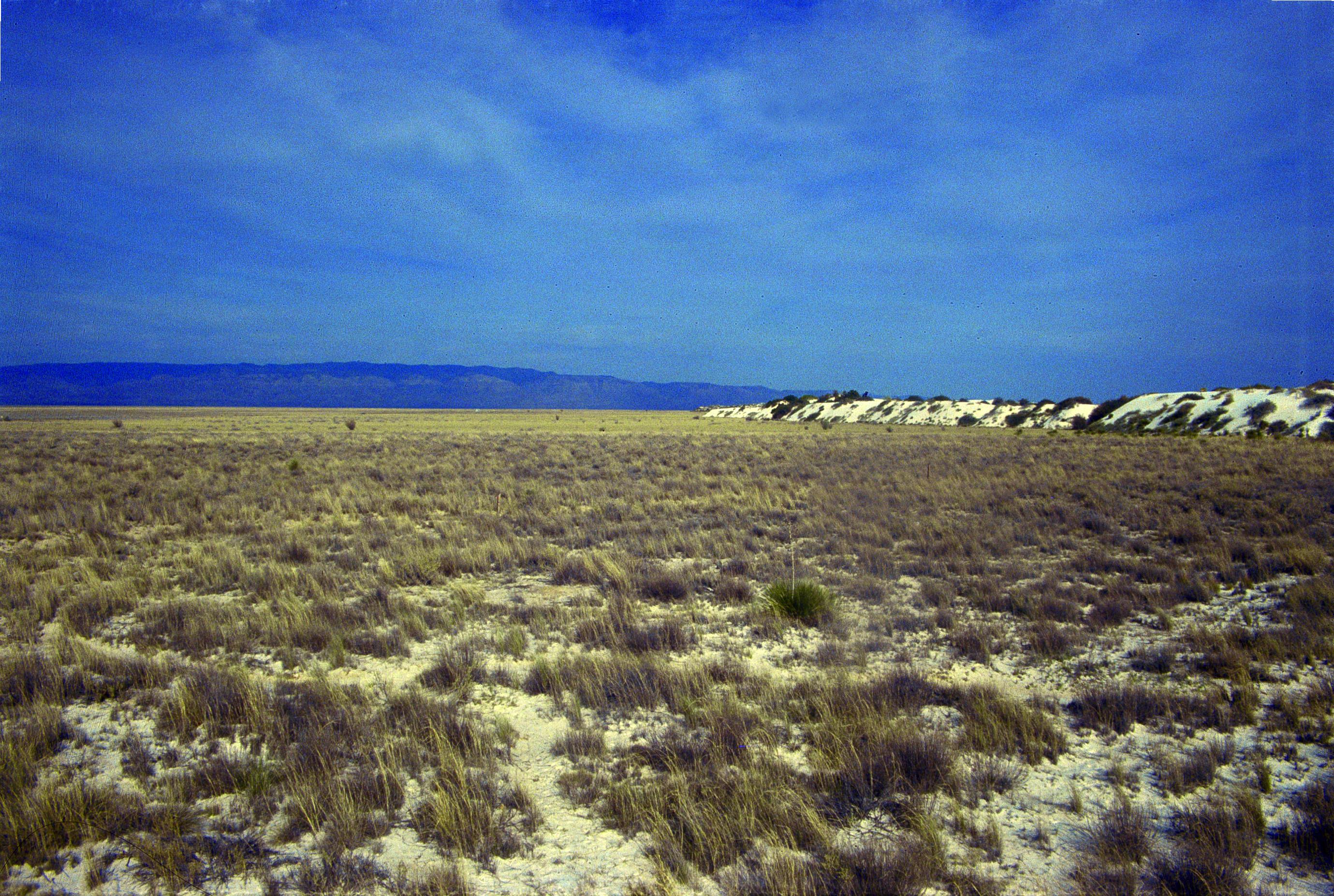 Desierto de White Sands