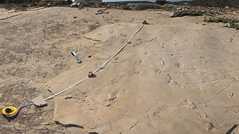 Huellas humanas de 5'7 millones de años halladas en Creta cuestionan la visión de África como cuna de la Humanidad